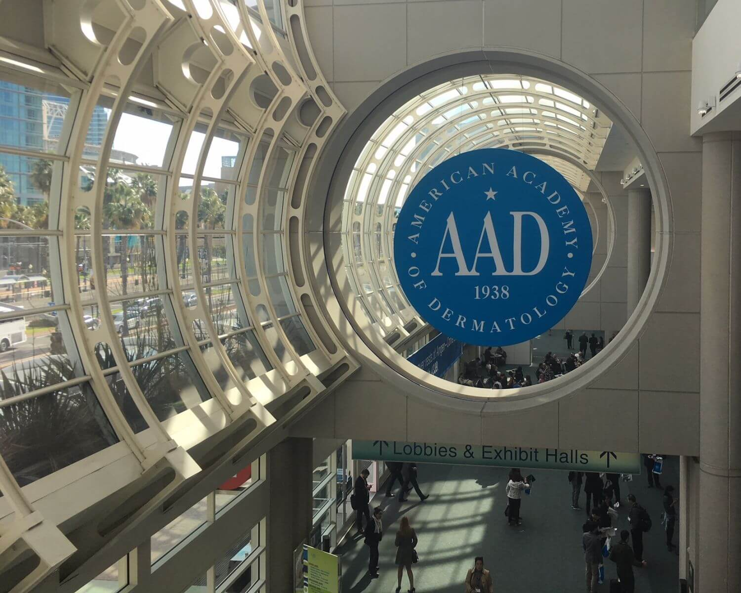 2018 AAD annual meeting